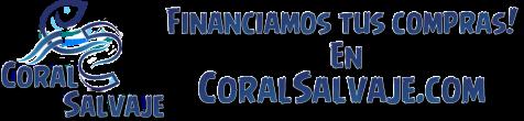 Coral Salvaje